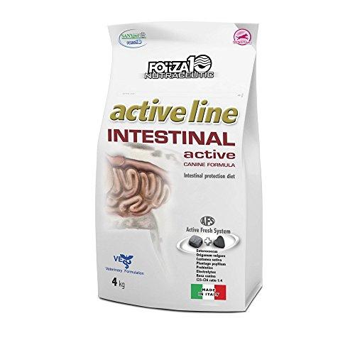 Forza10 - Intestinal Active 1 Sacco 10,00 kg