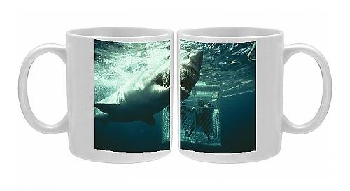 Photo Mug Of Great White / White / White Pointer Shark - A Scuba Divers In Ca From Ardea Wildlife Pets