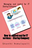 How to control cost for IT services - Startup Company: Managing cost control for IT Startup Company