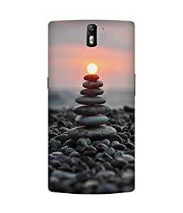 Carry On Cake OnePlus One Case
