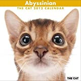 THE CAT 2012 年 カレンダー 猫 アビシニアン