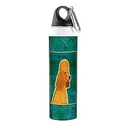 Tree-Free Greetings VB48061 John W. Golden Artful Traveler Stainless Steel Water Bottle, 18-Ounce, Apricot Poodle