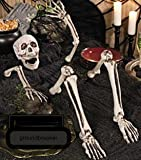 Ground Breaker Light Skeleton Halloween Prop