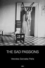 The Sad Passions (Semiotext(E) Native Agents)