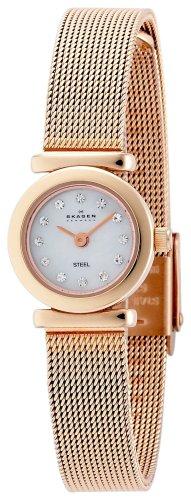 SKAGEN (スカーゲン) 腕時計 basic steel ladys 107XSRR ケース幅: 18mm レディース [正規輸入品]