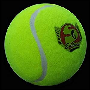 SG Endura Cricket Ball (Tennis Ball Heavy)