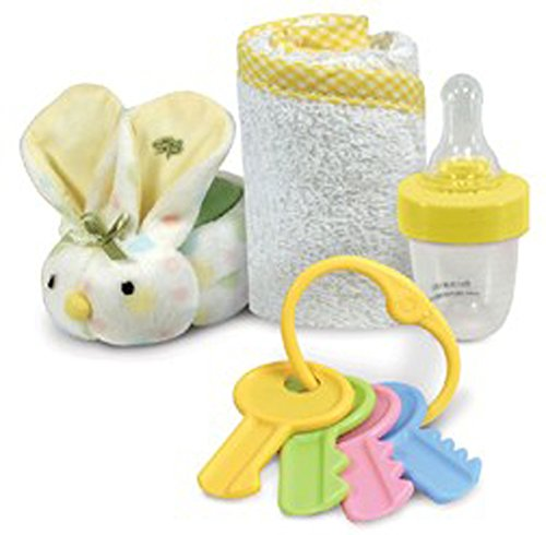 Perfect Baby Gift Box Set of Award Winner Boo-Bunnie, Medicine Bottle, Key Rattle and Soft Washcloth (Multi)