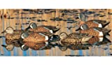 GHG Pro Grade Life Size Blue Winged Teal Duck Decoy