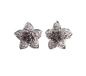 10k White Gold Diamond Accent Star Earrings