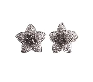 10k White Gold Diamond Accent Star Earrings