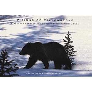 Todd Anderson - Visions of Yellowstone Reviews