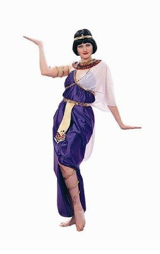 RG Costumes 81141 Cleopatra Costume - Size Adult Standard