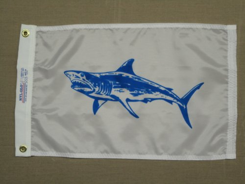 Shark Company back-433703