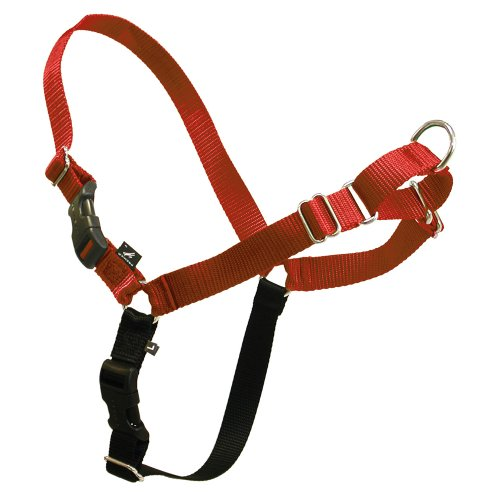 Eco Easy Walk Harness & Leash Set Premier No Pull Stop Pulling Large Sedonna Red