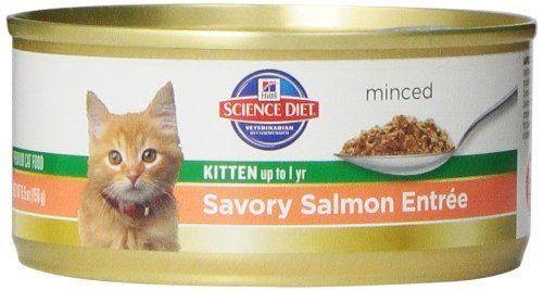 hills-science-diet-kitten-healthy-development-savory-salmon-entree-minced-cat-food-55-ounce-can-24-p