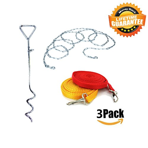 Tie Out Stake Leash and Chain for Dogs 3 Pack Bundle Dog Leash and Dog Yard Chain Tether Stake Tie-Out for Dogs 22 Feet Dog Tieout (Yard Stakes)
