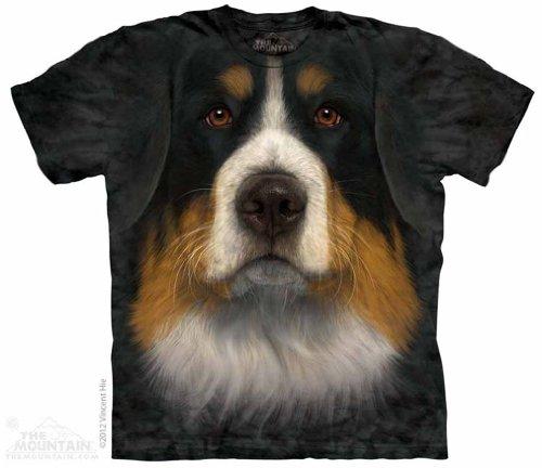 Bernese Mountian Dog Face