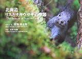 北海道 リスとナキウサギの季節 (写真集 佐野高太郎の視点)