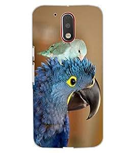 ColourCraft Cute Parrots Design Back Case Cover for MOTOROLA MOTO G4 PLUS