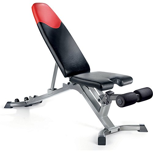 Bowflex Selecttech 3 1 Adjustable Bench Muscle Strategies