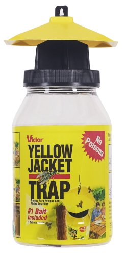 victor-poison-free-m362-reusable-yellow-jacket-flying-insect-trap