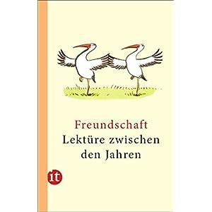 Lektüre zwischen den Jahren 2013: Freundschaft (insel taschenbuch)