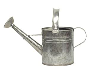 Houston international 8560 3 4 gallon steel watering can silver watering can - Gallon metal watering can ...