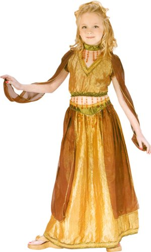 Child's Belly Dancer Costume (Size: Large 12-14)