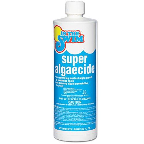 in-the-swim-super-pool-algaecide-1-quart