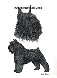 Bouvier - Double Image by Cindy Farmer