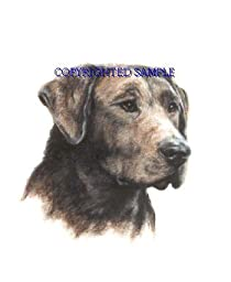 Labrador Retriever - Portrait by Cindy Farmer, Chocolate