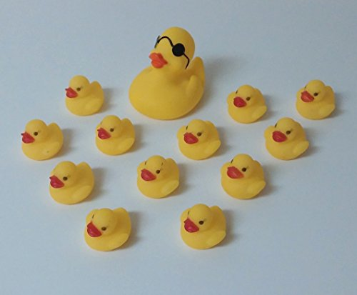 Mother Duck W/ Sun Glasses + 12 Baby Small Yellow Rubber Duckies Set front-105187