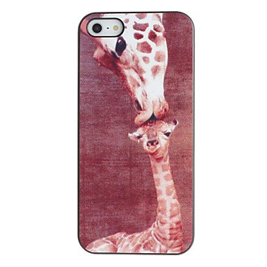 Giraffe Kissing Baby Giraffe