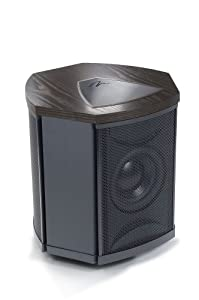 MartinLogan Depth i High-Performance Triple 8-Inch Servo-Control Subwoofer (Single, Black Ash) (Discontinued by Manufacturer)