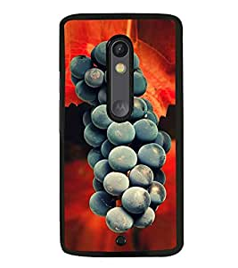 Fuson Premium 2D Back Case Cover Grapes With white Background Degined For Motoroal Moto X Style::Moto X Pure Edition