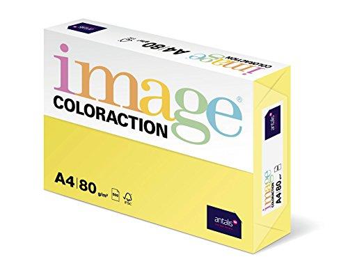 antalis-papel-de-colores-coloraction-838a-080s-41