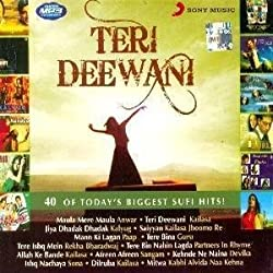 Teri Deewani: 40 of Todays Biggest Hits