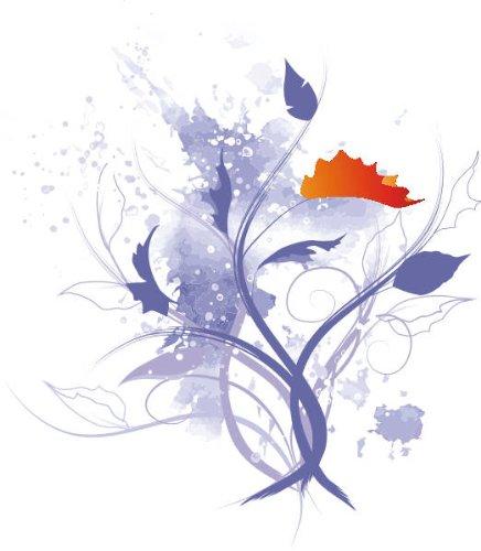 Imagen 1 de Etiqueta de la pared multicolor ME054 Hermosas flores 20 x 17 cm