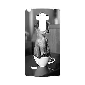 G-STAR Designer Printed Back case cover for OPPO F1 - G6099