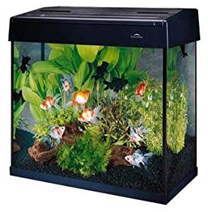Eclipse System 25gal Combo (25 Gallon Tank,200gph Pump)