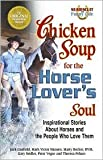 img - for Chicken Soup for the Horse Lover's Soul: Inspirational Stories About Horses and the People Who Love Them by Gary Seidler, Peter Vegso, Jack Canfield, Mark Victor Hansen, Marty Becker, D.V.M. book / textbook / text book