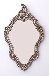 Goyal India Aluminium and Glass Mirror Frame with Copper Finish (Brown, 26950)