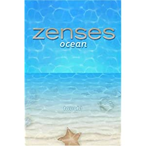 Online Game, Online Games, Video Game, Video Games, Nintendo, DS, Puzzle, Music, Dsi, Zenses: Ocean Edition