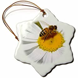 Patricia Sanders Daisy with Bee Snowflake Porcelain Ornament, 3-Inch