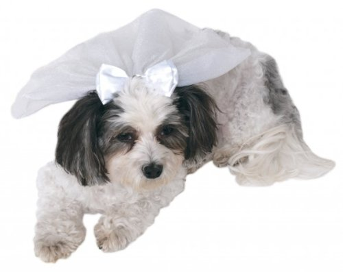 Rubie's Wedding Veil Pet Accessory, Medium/Large