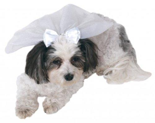 Wedding Veil for Pets