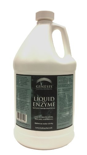 Ginesis Liquid Enzyme, 1 gallon