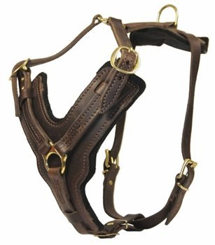Dean and Tyler The Victory Solid Brass Hardware Dog Harness with Handle, Brown, Medium - Fits Girth Size: 23-Inch to 34-Inch (Dean Tyler Harness Medium compare prices)
