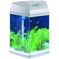 Fish R Fun Hexagonal Aquarium 21.6 Litre Silver