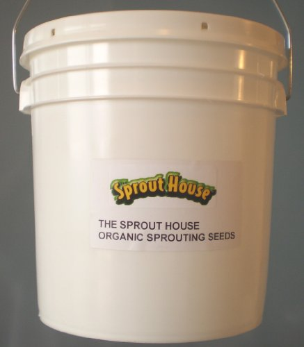 The Sprout House Hard Wheat for Wheatgrass Organic